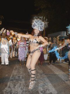 karneval_2011_sexy.jpg